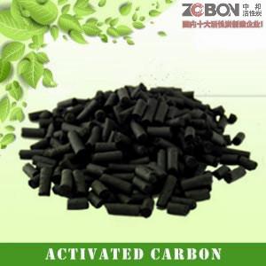 载体活性炭